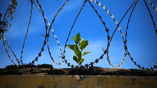 Jak napisać wniosek o wydanie zgody na widzenie z tymczasowo aresztowanym?